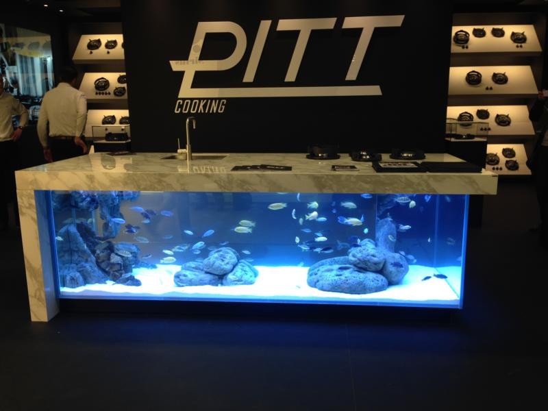 blog-imm15-aquarium